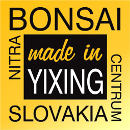 Made in Yixing, China - tea pots and bonsai pots