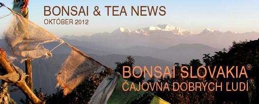 E-news Nepál