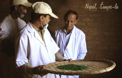 Nepal, ©angri-la Tea