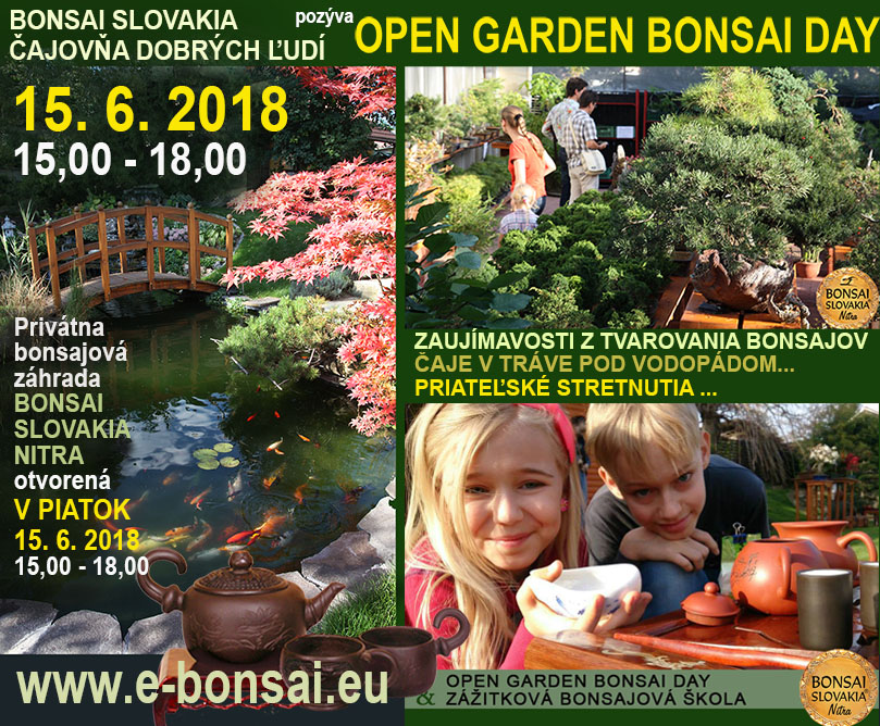 BONSAI GARDEN OPEN DAY