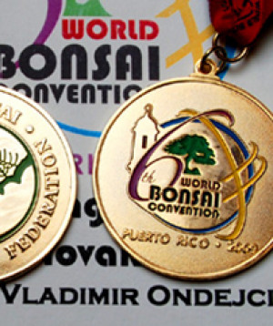GOLD MEDALS - WORLD BONSAI CONVENTION